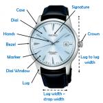 Automatic Watch Anatomy
