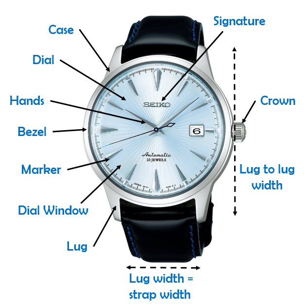 Automatic Watch Anatomy