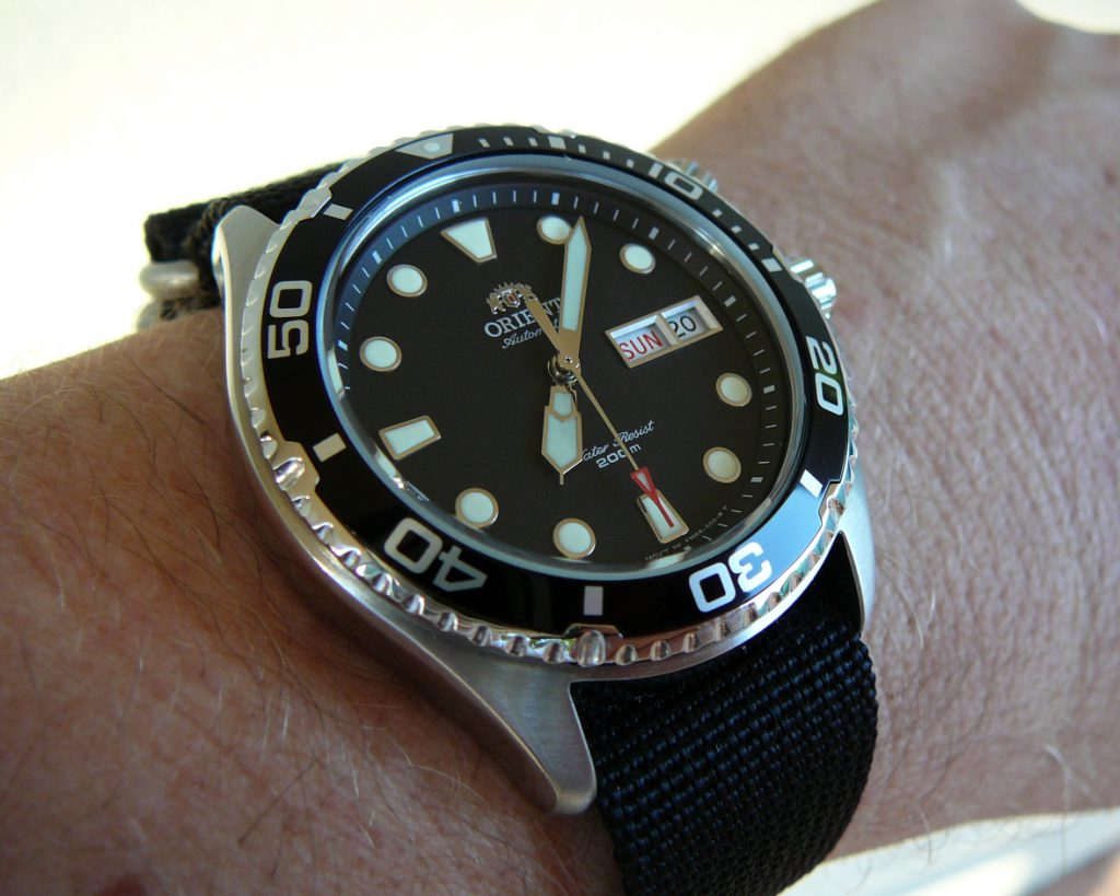 Orient Ray Review Ray Vs Mako Automatic Watches For Men